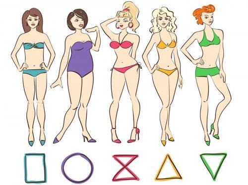 Формула тип фигуры. Типы женских фигур и как определить свой