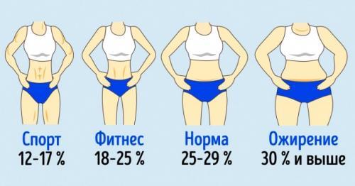 Процент жира в теле. Сколько жира должно быть вздоровом организме
