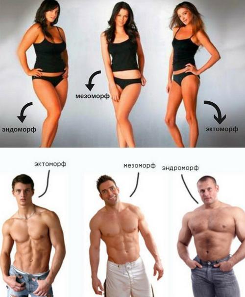 Расчет идеального веса с учетом телосложения