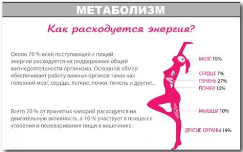 Сколько калорий есть в день, чтобы похудеть калькулятор. Почему нужно проводить подсчет калорий