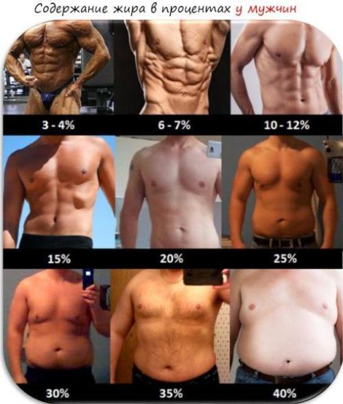 Как вычислить процент жира в организме женщины. Как рассчитать процент жира в организме: популярные способы
