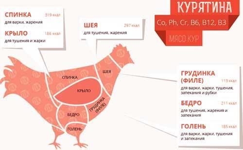 Сколько в жареной курице углеводов. Курица жареная