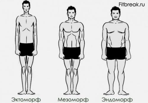 Определить тип телосложения по запястью. А Вы знаете, как определить свой тип телосложения?