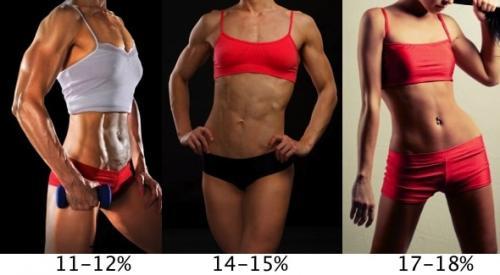 Как узнать сколько жира в теле. Процент жира в организме: как узнать и для чего это нужно?