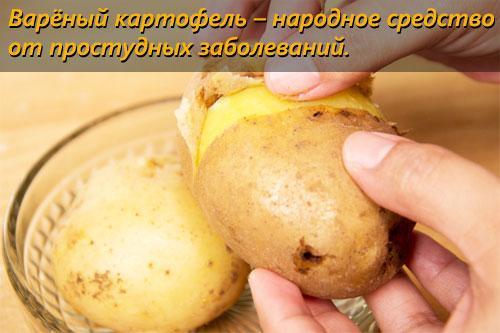 Калорийность вареного картофеля. Картофель варёный